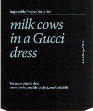 milkcows.jpg